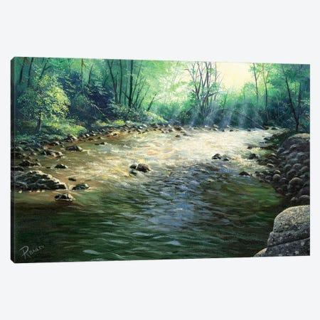 River Dance Canvas Print #RBL40} by Rod Bailey Canvas Artwork