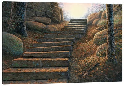 Seekers Path Canvas Art Print