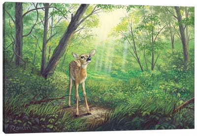 Something In The Air Canvas Art Print