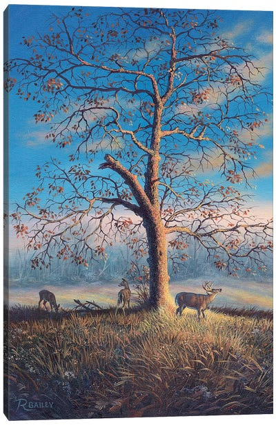 Tree Of Life by Rod Bailey Canvas Art Print
