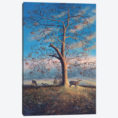 Tree Of Life Canvas Print #RBL45} by Rod Bailey Art Print
