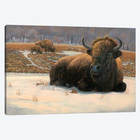 Winter Break Canvas Print #RBL47} by Rod Bailey Canvas Art Print