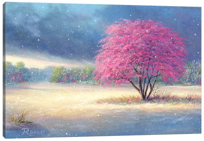 Winters Last Dance Canvas Art Print