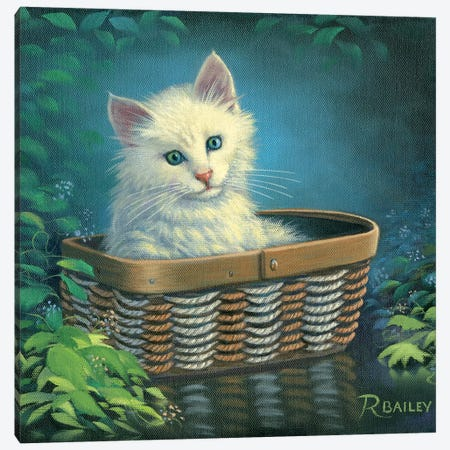 Basket Case Canvas Print #RBL5} by Rod Bailey Canvas Artwork