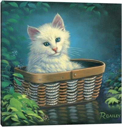 Basket Case Canvas Art Print