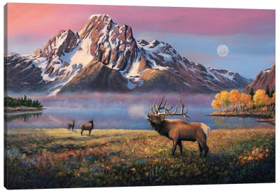 Courting Mt Moran Canvas Art Print