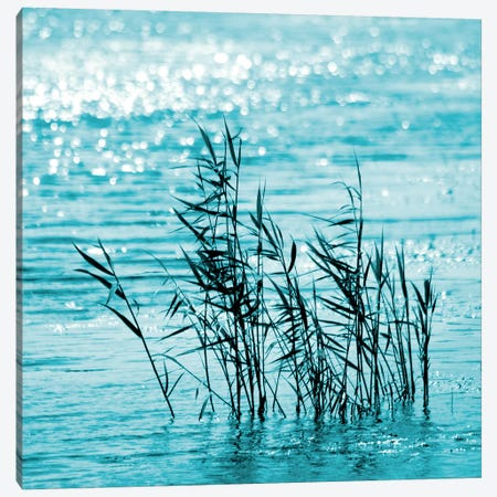 Cool Water Canvas Print #RBM13} by Ros Berryman Canvas Art