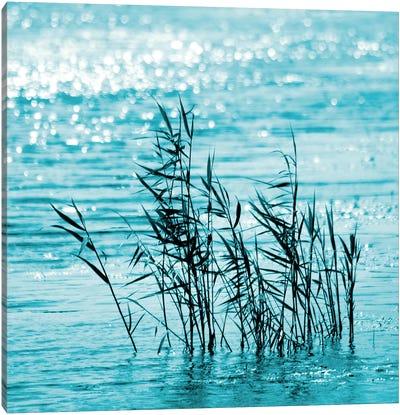 Cool Water Canvas Art Print