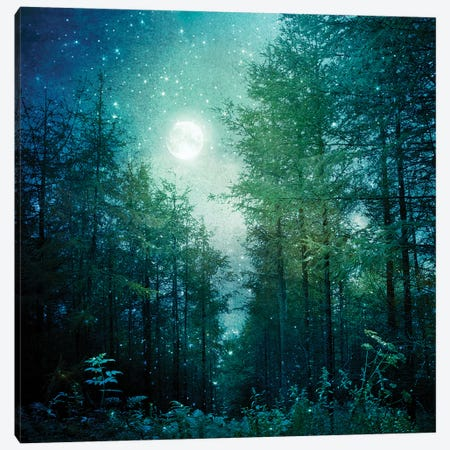 Enchanted Forest Canvas Print #RBM22} by Ros Berryman Canvas Art Print