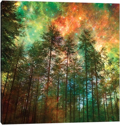 Fiery Forest Canvas Art Print