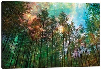 Forest Glow Canvas Art Print