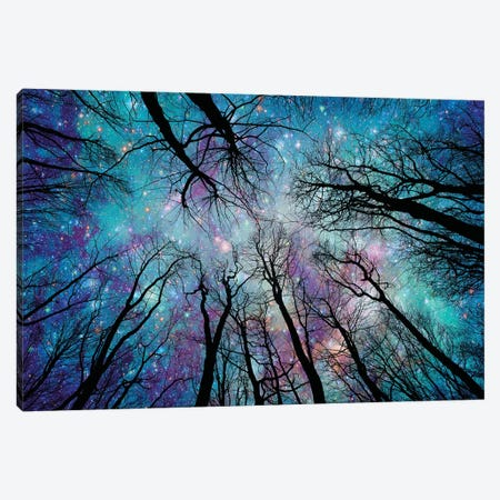 Starlight Canvas Print #RBM65} by Ros Berryman Canvas Art