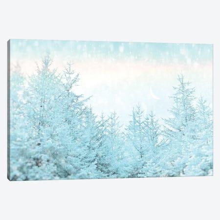 Blue Forest Canvas Print #RBM7} by Ros Berryman Art Print
