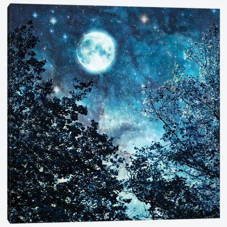 Blue Moon Canvas Print #RBM8} by Ros Berryman Canvas Wall Art