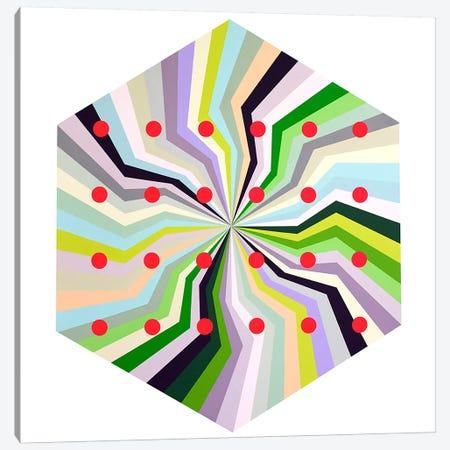 Fundamental Unity Canvas Print #RBO7} by Richard Blanco Canvas Print