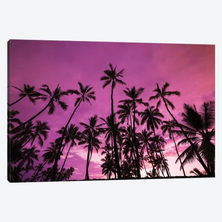 Palm trees at sunset, Pu'uhonua O Honaunau National Historic Park, Kona Coast, Hawaii Canvas Print #RBS113} by Russ Bishop Canvas Wall Art