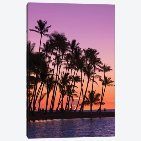 Sunset through silhouetted palms at Anaeho'omalu Bay, Kohala Coast, Big Island, Hawaii, USA Canvas Print #RBS126} by Russ Bishop Canvas Wall Art
