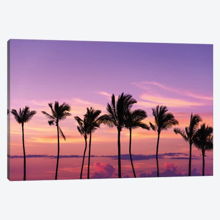 Sunset through silhouetted palms at Anaeho'omalu Bay, Kohala Coast, Big Island, Hawaii, USA Canvas Print #RBS127} by Russ Bishop Canvas Wall Art
