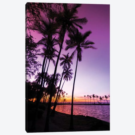 Sunset through silhouetted palms at Anaeho'omalu Bay, Kohala Coast, Big Island, Hawaii, USA Canvas Print #RBS128} by Russ Bishop Canvas Print
