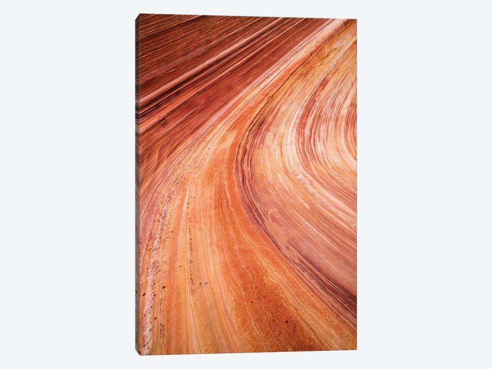 The Wave, Coyote Buttes, Paria-Vermilion Cliffs Wilderness, Arizona, USA by Russ Bishop 1-piece Art Print