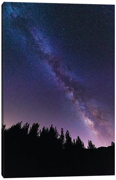 The Milky Way over Rose Valley, Los Padres National Forest, California, USA Canvas Art Print