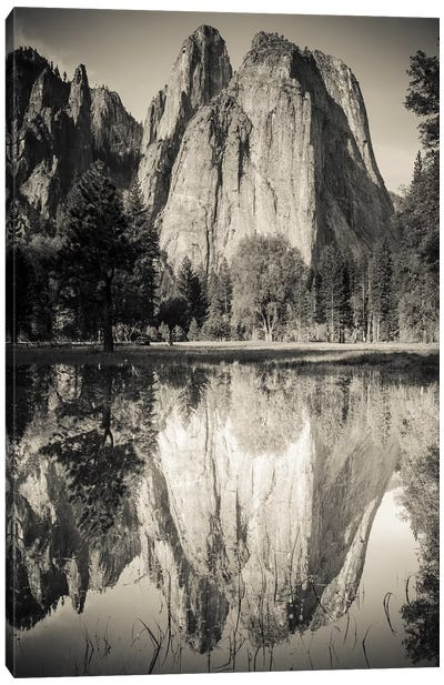 Cathedral Rocks reflected in pond, Yosemite National Park, California Canvas Art Print