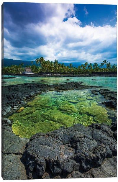 Coral reef and haiku, Pu'uhonua O Honaunau National Historic Park, Kona Coast, Hawaii Canvas Art Print