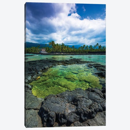 Coral reef and haiku, Pu'uhonua O Honaunau National Historic Park, Kona Coast, Hawaii Canvas Print #RBS65} by Russ Bishop Canvas Artwork