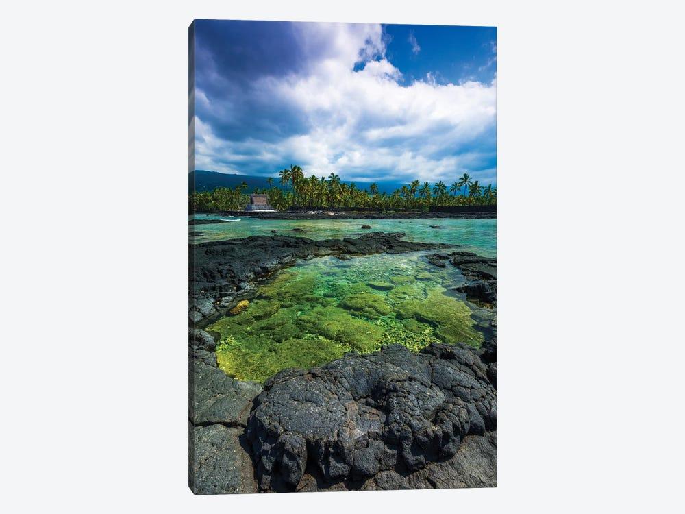 Coral reef and haiku, Pu'uhonua O Honaunau National Historic Park, Kona Coast, Hawaii by Russ Bishop 1-piece Canvas Print