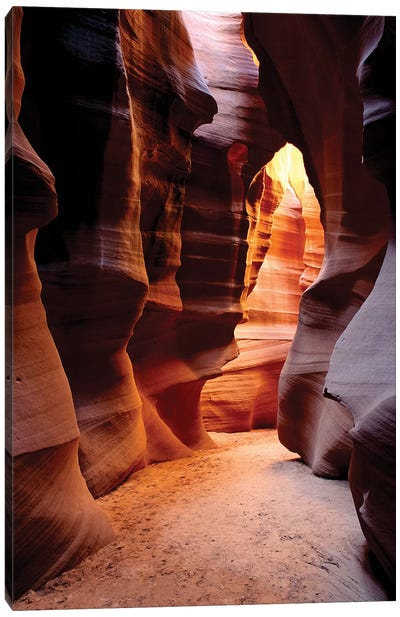 Delicate slickrock formations in upper Antelope Canyon, Navajo Indian Reservation, Arizona, USA Canvas Art Print