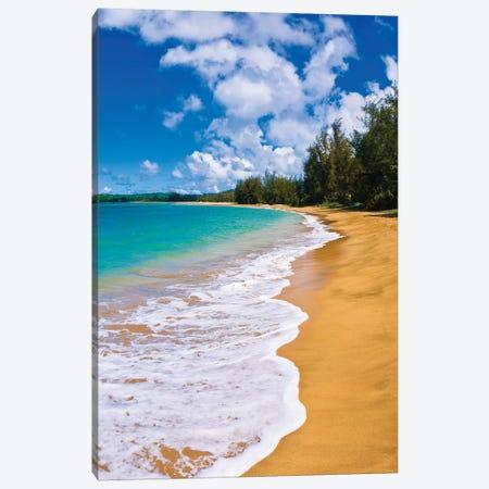 Empty beach and blue Pacific waters on Hanalei Bay, Island of Kauai, Hawaii, USA Canvas Print #RBS71} by Russ Bishop Canvas Artwork