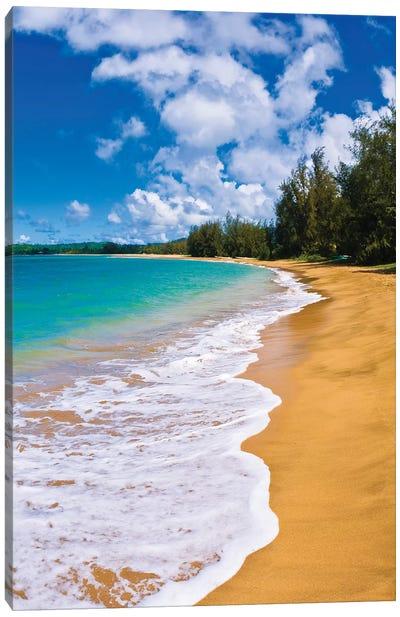 Empty beach and blue Pacific waters on Hanalei Bay, Island of Kauai, Hawaii, USA Canvas Art Print