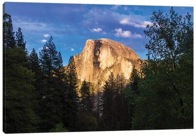Evening light on Half Dome, Yosemite National Park, California, USA Canvas Art Print