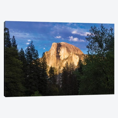 Evening light on Half Dome, Yosemite National Park, California, USA Canvas Print #RBS73} by Russ Bishop Canvas Wall Art