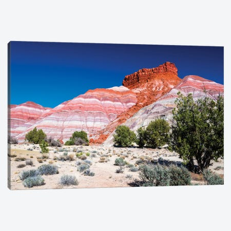 Evening light on the Cockscomb, Grand Staircase-Escalante National Monument, Utah, USA 3-Piece Canvas #RBS75} by Russ Bishop Art Print