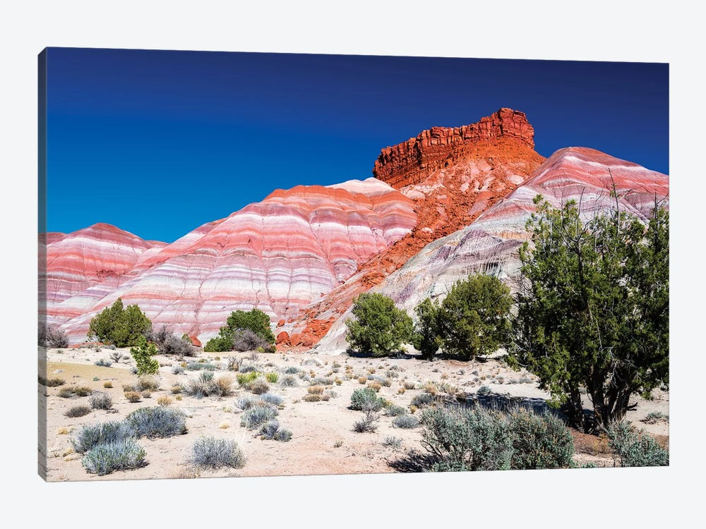Evening light on the Cockscomb, Grand Staircase-Escalante National Monument, Utah, USA by Russ Bishop 1-piece Canvas Art