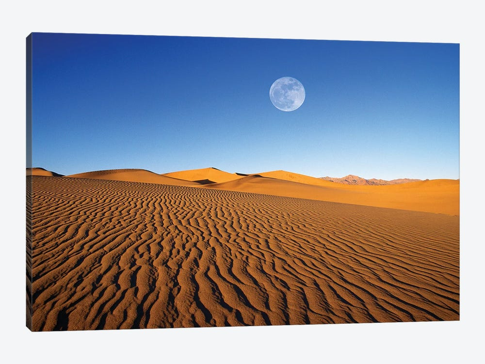 Full moon over evening light on dune patterns on the Mesquite Flat Sand Dunes, Death Valley NP, CA by Russ Bishop 1-piece Canvas Artwork