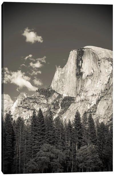 Half Dome, Yosemite National Park, California, USA Canvas Art Print