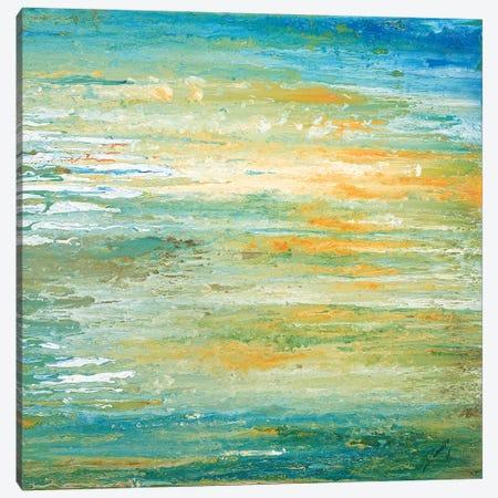 Winter Sunset Canvas Print #RBT13} by Roberto Gonzalez Canvas Print