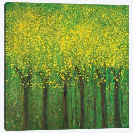 Awakening Canvas Print #RBT18} by Roberto Gonzalez Canvas Print