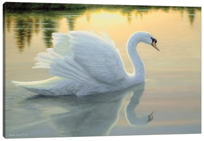 Quiet Waters Canvas Art Print