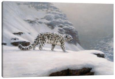 Winter's Solitude Canvas Art Print