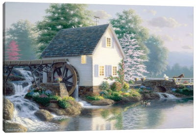 The Miller's Pond Canvas Art Print