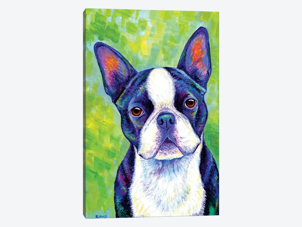 Effervescent - Boston Terrier by Rebecca Wang 1-piece Canvas Artwork