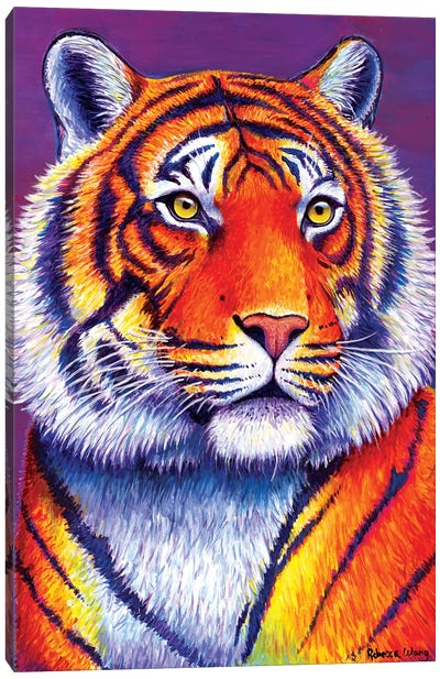 Fiery Beauty - Bengal Tiger by Rebecca Wang Canvas Art Print