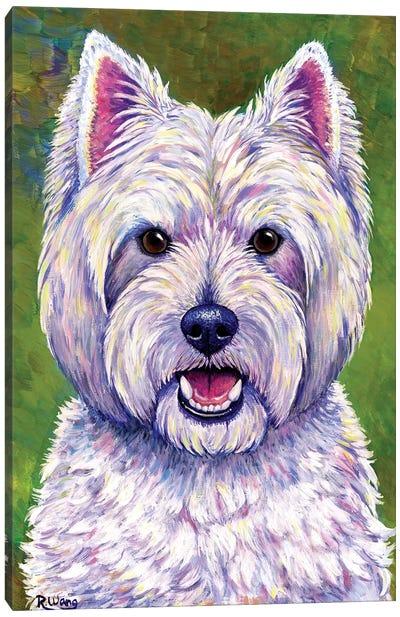 Happiness - West Highland White Terrier by Rebecca Wang Canvas Art Print