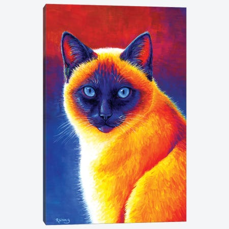 Jewel of the Orient - Siamese Cat Canvas Print #RBW17} by Rebecca Wang Canvas Art Print
