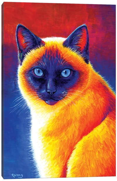 Jewel of the Orient - Siamese Cat Canvas Art Print
