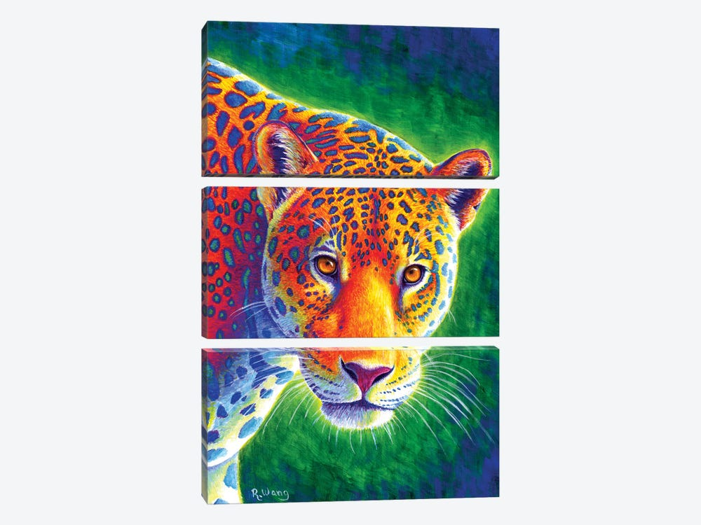 Light in the Rainforest - Jaguar by Rebecca Wang 3-piece Canvas Artwork