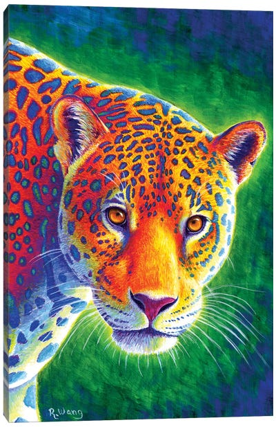 Light in the Rainforest - Jaguar Canvas Art Print